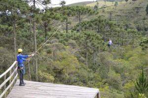 Arborismos na Trilha do Rio Sapucaí  - Horto Florestal